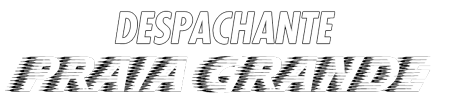 DESPACHANTE PRAIA GRANDE Logo